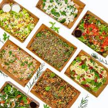 Regular Salad Platter