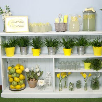 Homemade Lemonade Stand
